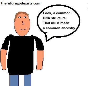 does dna prove evolution 1