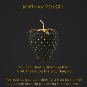 Matthew-7